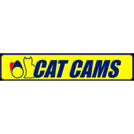 Arbre a Cames Catcams - Peugeot/Citroen XU10J4RS 2.0 16s 306 S16 Xsara VTS
