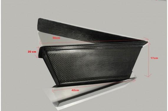 Boîte à air carbone AC SPORT pour RENAULT CLIO II RS F2000 4 papillons
